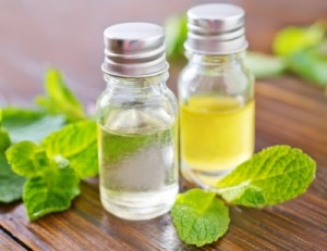 pepper mint essential oil recipes